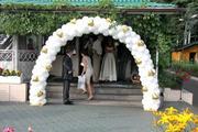 Гирлянда и арка из шаров