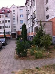 Квартира в Бресте