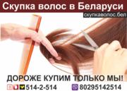 Продать волосы в Могилеве.