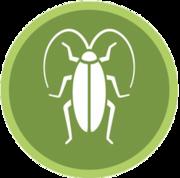 Обработка от тараканов,  клопов,  крыс,  мышей и других вредителей