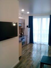 Апартаменты евро люкс на сутки возле гостиницы Могилёв