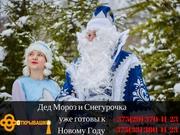 Дед Мороз и Снегурочка на дому(стандарт)